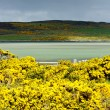 Loch Eriboll — Stock Photo
