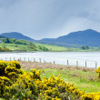 Stock Photo: Highlands, Scotland