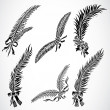 Stock Photo: Vector Feather Set