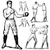 Vector Vintage Boxing Illustrations — Stock Photo