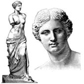 Vector Aphrodite Statue — Stock Photo