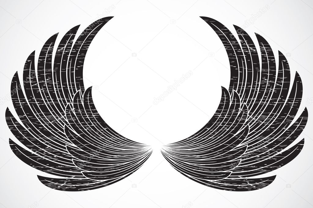 Set of illustrated wings. Easy to edit and scale to any size. — Stock Photo #3526780