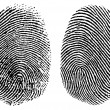 Vector Finger Prints - Stock Photo