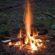 Royalty-Free Stock Photo: Campfire