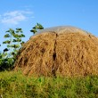 Stock Photo: Rural scene with haystack