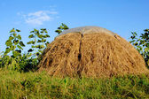 Rural scene with haystack — Stock Photo