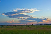Evening at steppe — Stock Photo