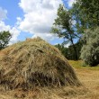 Haystack — Stock Photo #2780051