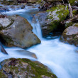 Moutain stream water — Stock Photo
