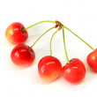 Stock Photo: Five cherryes