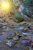 Stones in mountain river water — Stock Photo