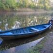 Foto Stock: Blue boat on river