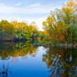 Autumn on river — Stock Photo