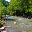 Mountain river — Stock Photo #2820262