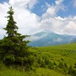 Stock Photo: Nice mountain landscape