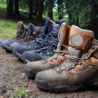 Tourists boots in forest camp — Stock Photo