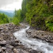 Mountain stream in valley — Stock Photo