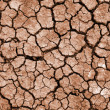 Stock Photo: Cleft on dried earth