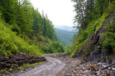Road in mountain valley — Stock Photo
