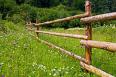 Rural woden fence — Stock Photo