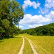 Rural road at nice summer day — Stock Photo