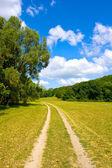 Landelijke weg op mooie zomerdag — Stockfoto