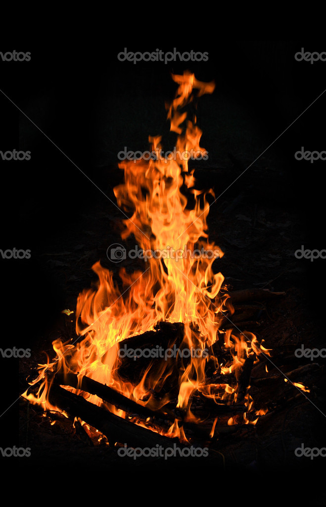 Bright flame of hot campfire — Stock Photo #3044234