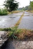 Abandoned road — Stock Photo
