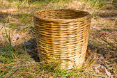 Woven basket on grass in forest — Stok fotoğraf
