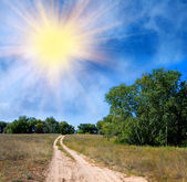 Rural road across field in steppe — Stock Photo