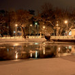 Night winter scene with lake in the park — Stock Photo #3100778