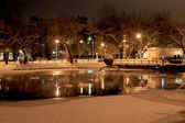 Night winter scene with lake in the park — Stock Photo