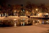 Noc zimowa scena z jeziora w parku — Zdjęcie stockowe