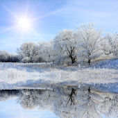 Nice winter lake scene — Stock Photo