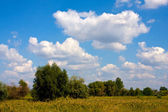 Landscape with nice clouds over steppe — Stock Photo