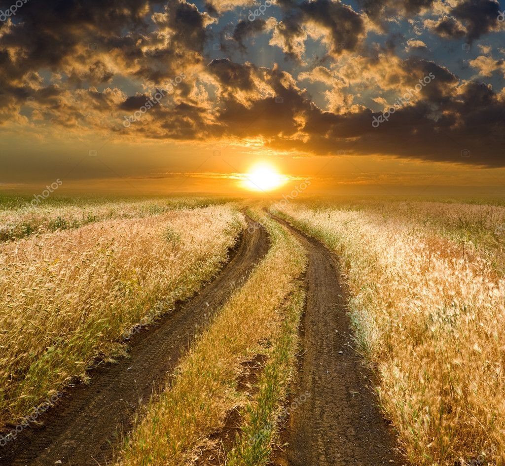 Rural road to sunset in steppe — Stock Photo #3718823