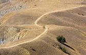 Rural road on deserted land — Stockfoto