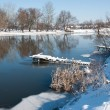 flod i vinter — Stockfoto #3188850