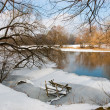 River in winter — Stok fotoğraf