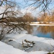 flod i vinter — Stockfoto #3188961