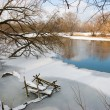 River in winter — Stock fotografie