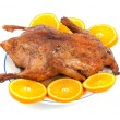 Baked duck — Stock Photo