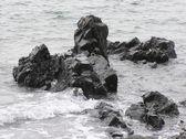 Rocky Shoreline — Stock Photo