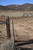 Ranch Fence - Wyoming — Foto Stock