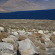 Walker Lake — Stock Photo