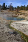 Yellowstone - West Thumb Geyser Basin — Stock Photo