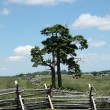 Stock Photo: Gettysburg - Pennsylvania Battlefield