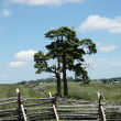 Gettysburg - Pennsylvania Battlefield — Stock Photo