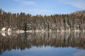 Yellowstone National Park - Lake — Stock Photo