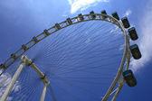 新加坡摩天观景轮 — 图库照片